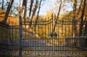 Kovaný plot a brána, ilustrační foto (www.shutterstock.com)